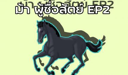ม้า ผู้ซื่อสัตย์